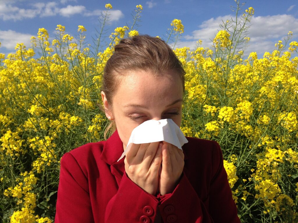 Home Purification System for Allergies